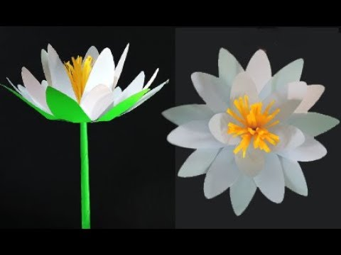 How to make water lily with paper