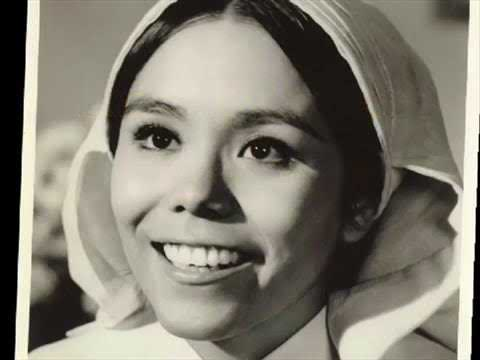 Download Remembering The Cast From The Flying NUN
