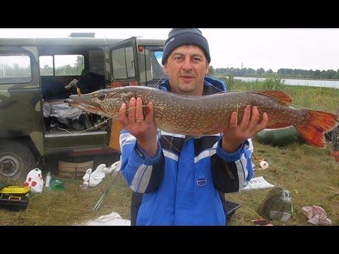 рыбалка на линя в челябинской области