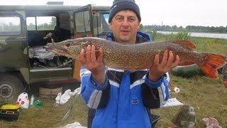 Трудовая рыбалка и ловля щуки, окуня на спиннинг.(Получилась офигенная рыбалка на щуку. http://vk.com/club54909822 группа в контакте https://www.facebook.com/groups/524215447638137 группа..., 2013-08-01T14:25:47.000Z)