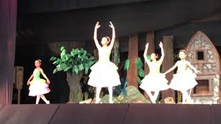 Classical Ballet 2019@ Ava's School of Dance
