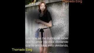 Lágrimas De Escarcha-Cumbia-Karaoke (Los Gatos Negros De Tiberio) 2015 Thornado