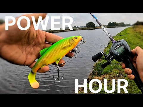 Pike Fishing Power Hour! With Savage Gear River Roach