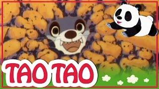 Tao Tao - 6 -  השמועה הגדולה