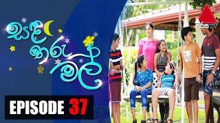 සඳ තරු මල් | Sanda Tharu Mal | Episode 37 | Sirasa TV Thumbnail