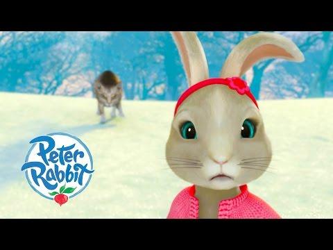 Peter Rabbit - Dangerous Song Special Brand New!!