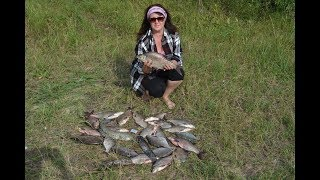Фидер. Рыбалка на Мокше Азеево