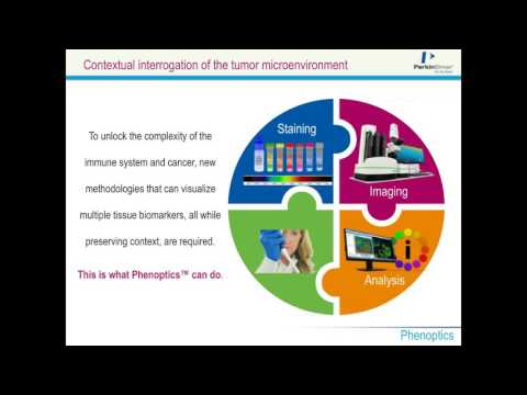 Edward Stack - Using multiplexed IHC to effectively navigate the hidden...