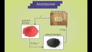 Общая и неорганическая химия. Неорганическая химия