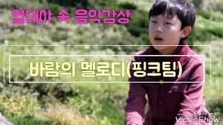 열대야 속 오연준 음악감상 - 바람의 멜로디(위키드 핑크팀,feat 오연준)