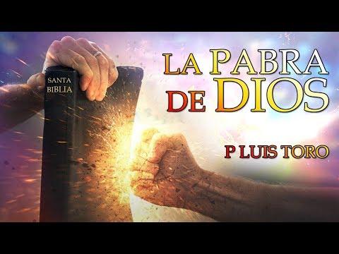 LO QUE NO SABIAS DE LA PALABRA DE DIOS  - P Luis Toro