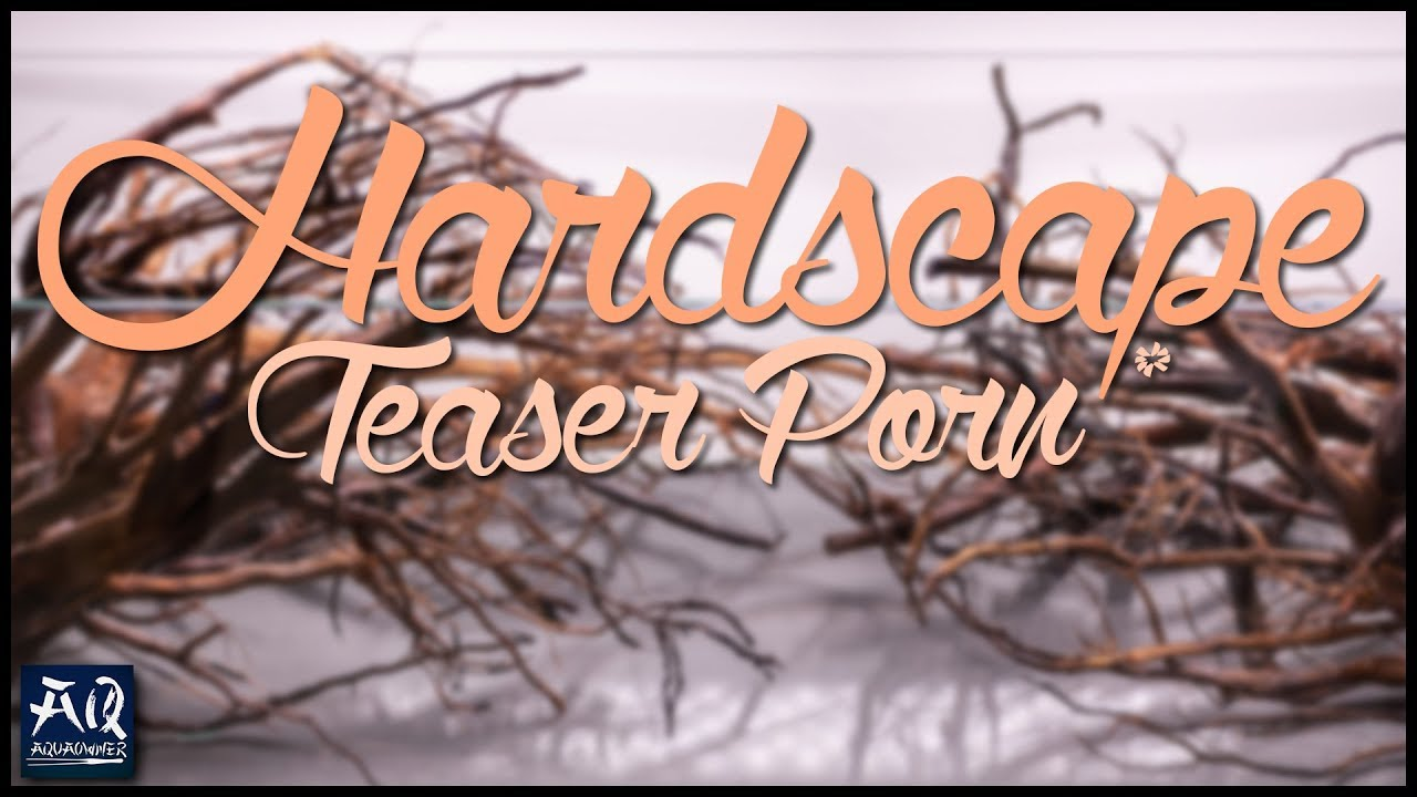 Hardscape Porn - 120F HARDSCAPE TEASER PORN | Das Holz für das 120F Projekt | AquaOwner