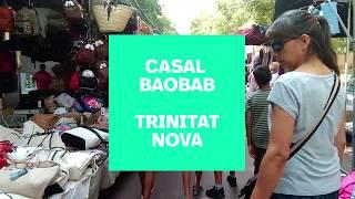 Videoclip Casal Baobab Trinitat Nova