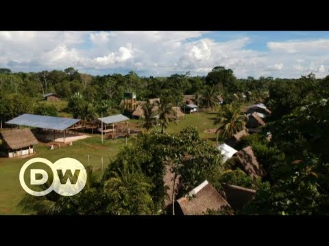 Deforestation in Peru and other world stories   DW Documentary