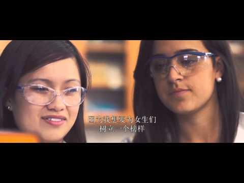 Miami University Love & Honor (Chinese Subtitles)