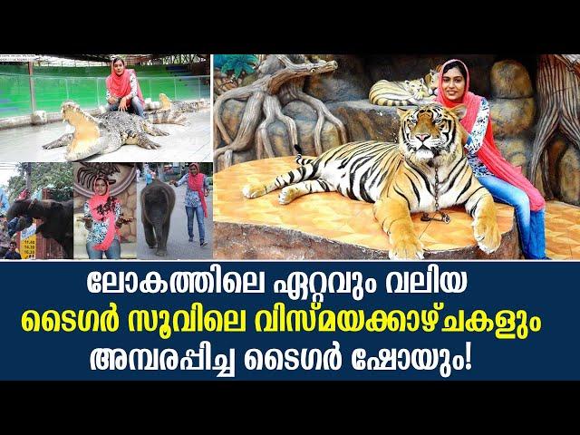 Thailand Tiger Zoo | തായ്ലൻഡ് ടൈഗർ സൂവിലെ അമ്പരപ്പിക്കുന്ന വിസ്മയക്കാഴ്ചകൾ