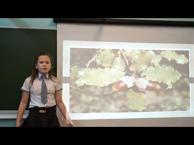 Изображение предпросмотра прочтения – АнастасияЗахарова читает произведение «Осень» А.Н.Майкова