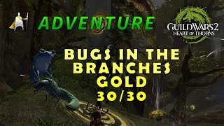 Bugs in the Branches 30/30 - Gold - Adventure - Guild Wars 2: Heart of thorns