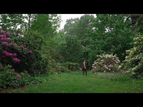 Ep 079: Planting Fields Arboretum Tour: Part 1 - Plant One On Me