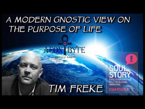 A Modern Gnostic View on the Purpose of Life