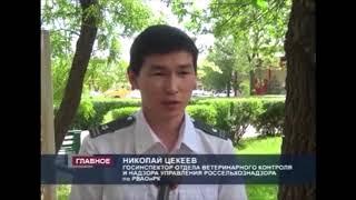 Эпизоотический мониторинг в Калмыкии