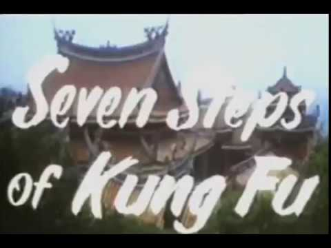 Download Seven Step of Kungfu