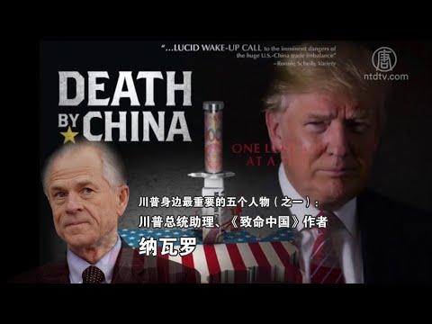 川普身边最重要的五个人物(之一):川普总统助理、《致命中国》作者纳瓦罗