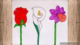 3 Farklı Çiçek Çizimi ✓ Gül ve çiçek çizimi ✓ ÇİÇEK ÇİZİMLERİ