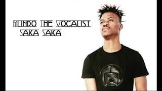 Mlindo The Vocalist   Saka Saka.mp3