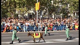 DESFILE FIESTA NACIONAL ESPAÑA - LA LEGION Y REGULARES