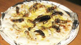 死ぬまでに食べたい美味い虫を集めてみました。グロイ虫ですが一度はい...