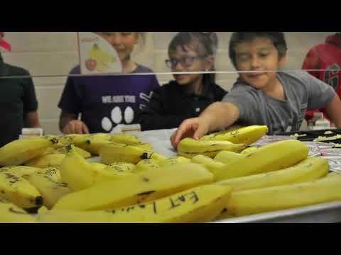 Banana Notes at Treasure Forest Elementary School