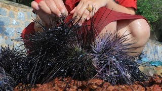 Yummy Urchin Grilling Recipe - Urchin Cooking - Cooking With Sros