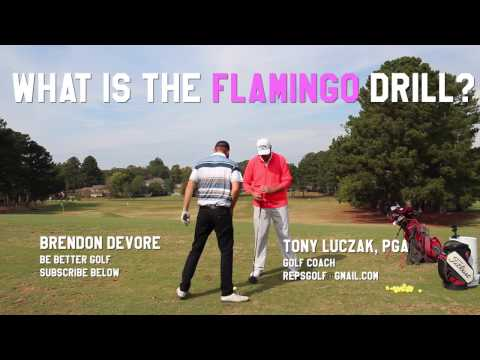 how golf changed my life How does playing sports affect someone's life change your life with myplate by live strongcom how does playing sports affect your health 2.
