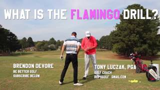 Flamingo Drill Might Change Your Golf Life