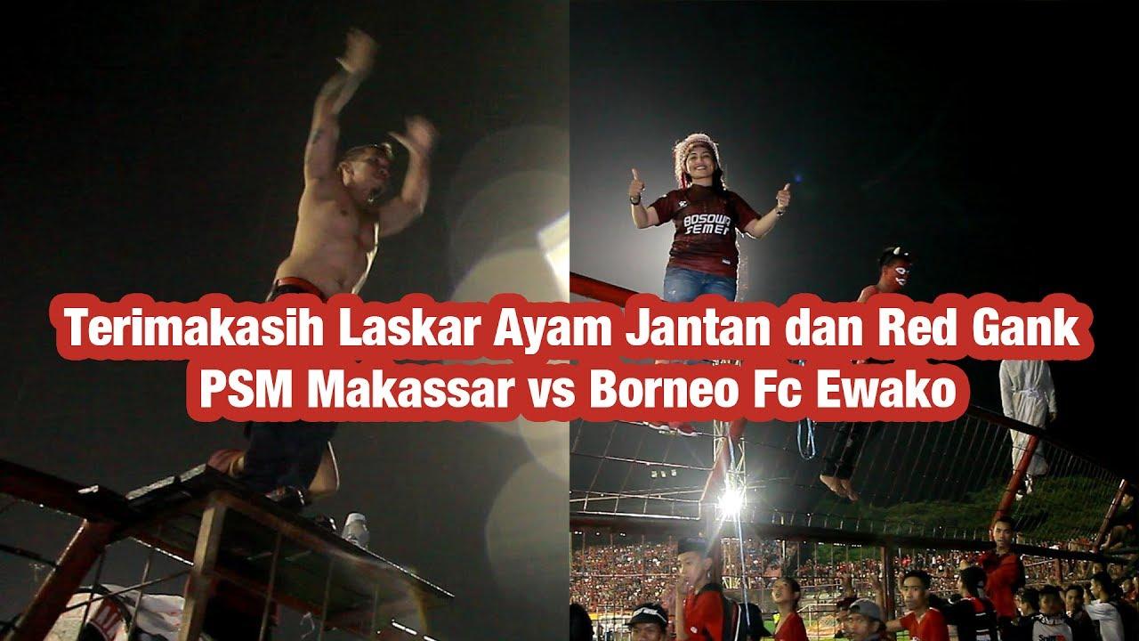 Terimakasih Laskar Ayam Jantan Dan Red Gank Psm Makassar