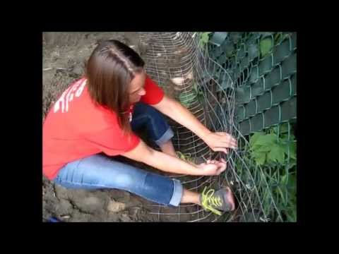 How to dig proof extend your fence youtube How do you keep rabbits out of your garden