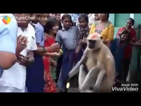 aaj mangal war hai mahabir ka war hai