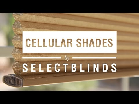 Cellular Shades by SelectBlinds