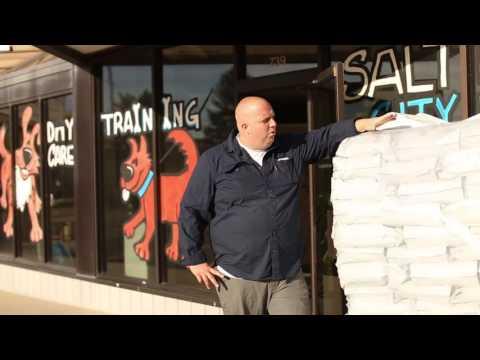 Real Dog Trainers of SLC  - Brain Food Dog Food Shipment