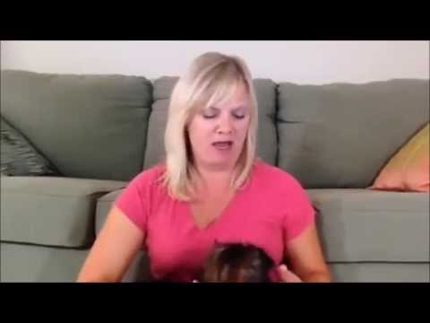 training-puppies-not-to-bite---youtube