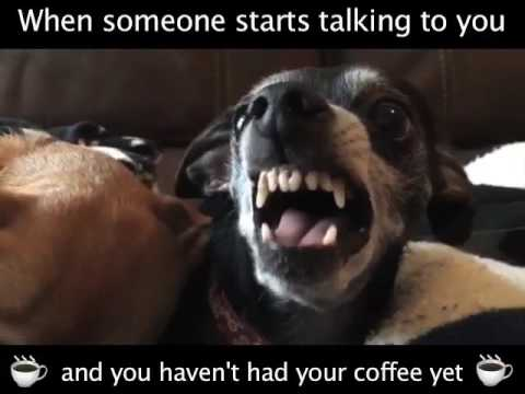 When You Haven't Had Your Coffee...