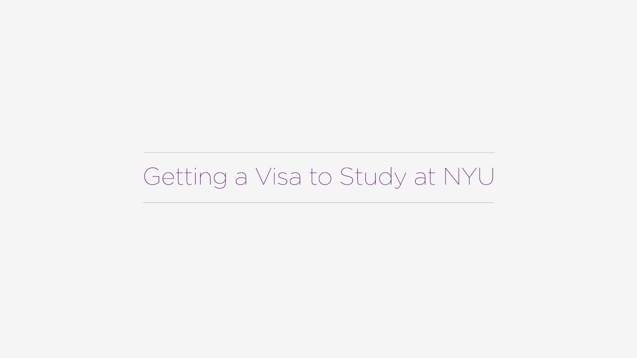 What does NYU look for when admitting students?