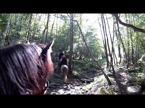 FREE!!. OFF ROAD HORSEBACK ADVENTURES. BASQUE COUNTRY