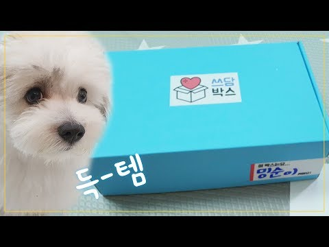 [ENG SUB] Dog supplies Random Box Unboxing from YouTube · Duration:  7 minutes 13 seconds
