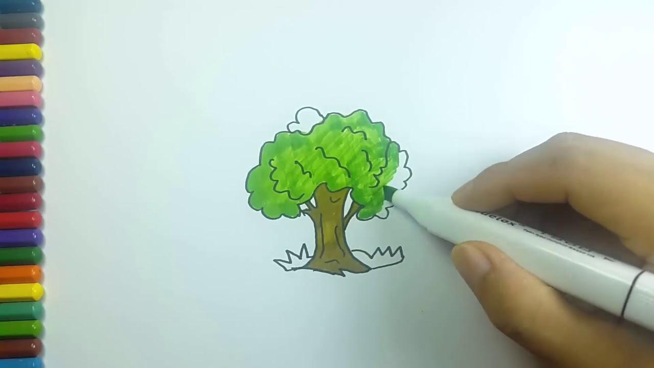 Menggambar Dan Mewarnai Pohon Beringin Dengan Mudah Youtube