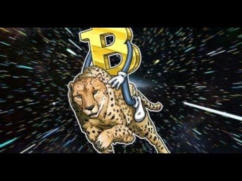 Bitcoin price $6000  what's next?