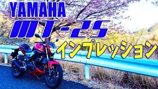 [モトブログ]YAMAHA MT-25超適当インプレッション&ランダムトーク [Motovlog]FZ1 FAZER