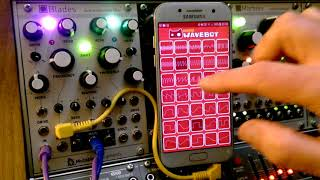 Mutable Instruments Blades Eurorack Stereo Multimode Filter (and Wavebot!)
