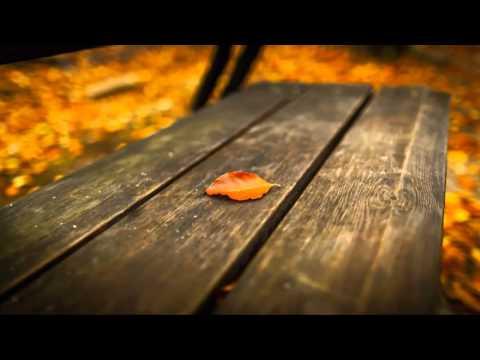 'Alvidaa' Nahin Kahunga - Love Anthem of The Season - Ft. Amit Sengar